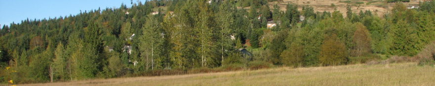 Beautiful Bell Hill land parcel for sale – $140,000