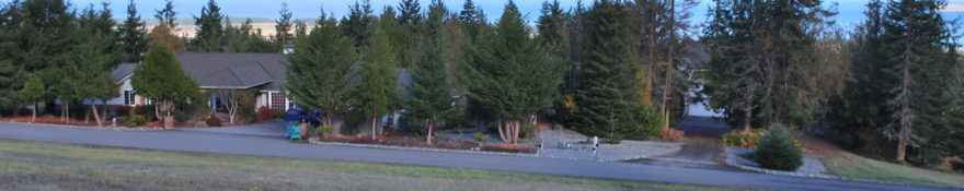 Large corner parcel in one of Sequim's finest neighborhoods – $134,500