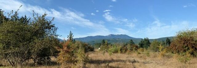 Five acres of flat, mountain view land just a few minutes from downtown Sequim – $130,900