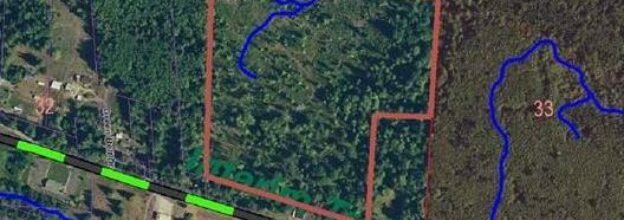 31 acres of land for sale in Joyce – $289,000